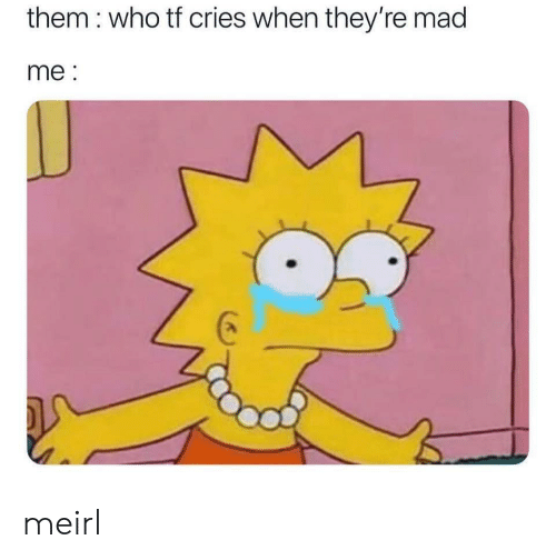 Mad, MeIRL, and Who: them : who tf cries when they're mad  me: meirl