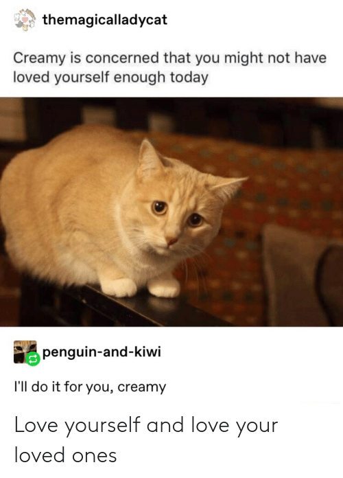 concerned: themagicalladycat  Creamy is concerned that you might not have  loved yourself enough today  penguin-and-kiwi  I'll do it for you, creamy Love yourself and love your loved ones