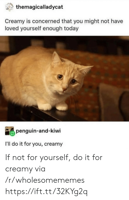 concerned: themagicalladycat  Creamy is concerned that you might not have  loved yourself enough today  penguin-and-kiwi  I'll do it for you, creamy If not for yourself, do it for creamy via /r/wholesomememes https://ift.tt/32KYg2q