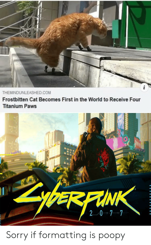7 7: THEMINDUNLEASHED.COM  Frostbitten Cat Becomes First in the World to Receive Four  Titanium Paws  SAM  ybeRFAINK  20 7 7 Sorry if formatting is poopy