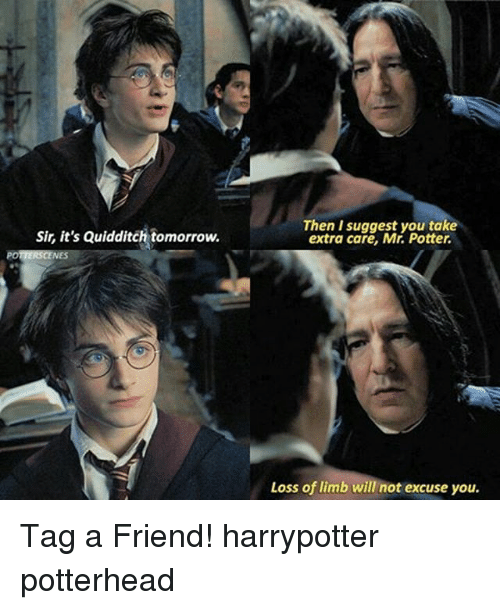 Memes, Tomorrow, and Quidditch: Then I suggest you take  extra care, Mr. Potter.  Sir, it's Quidditch tomorrow.  Loss of limb will not excuse you. Tag a Friend! harrypotter potterhead