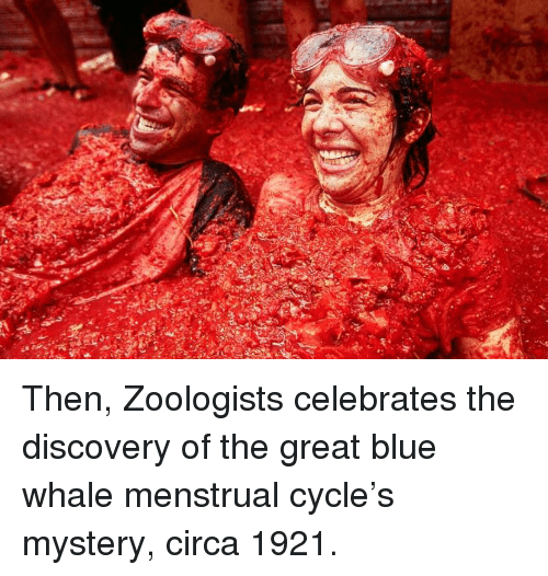 Menstrual: Then, Zoologists celebrates the discovery of the great blue whale menstrual cycle's mystery, circa 1921.