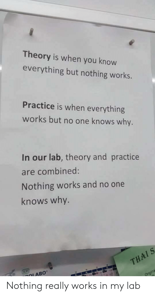 One, Why, and You: Theory is when you know  everything but nothing works.  Practice is when everything  works but no one knows why.  In our lab, theory and practice  are combined:  Nothing works and no one  knows why.  OLAB0 Nothing really works in my lab