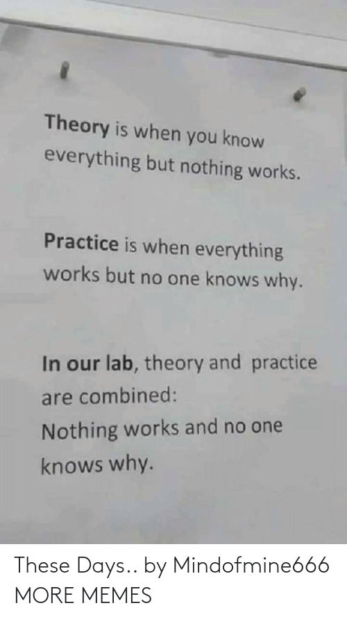 But No: Theory is when you know  everything but nothing works.  Practice is when everything  works but no one knows why.  In our lab, theory and practice  are combined:  Nothing works and no one  knows why. These Days.. by Mindofmine666 MORE MEMES