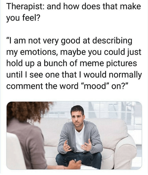 "Bunch Of: Therapist: and how does that make  you feel?  ""I am not very good at describing  my emotions, maybe you could just  hold up a bunch of meme pictures  until I see one that I would normally  comment the word ""mood"" on?"""