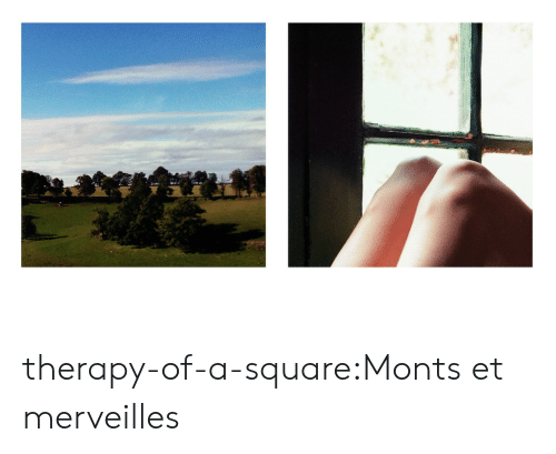 Tumblr, Blog, and Square: therapy-of-a-square:Monts et merveilles