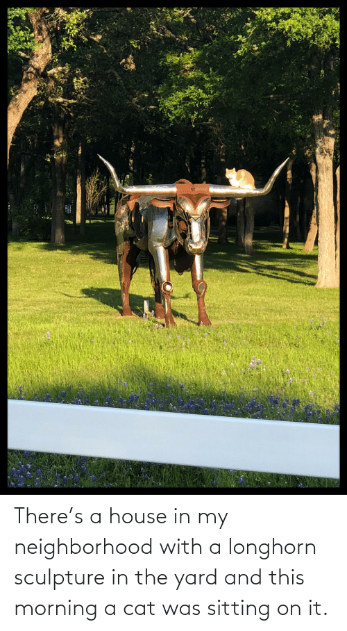 House, Cat, and Yard: There's a house in my neighborhood with a longhorn sculpture in the yard and this morning a cat was sitting on it.