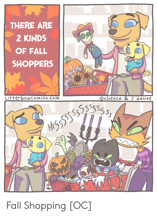 Kinds Of: THERE ARE  2 KINDS  OF FALL  SHOPPERS  Litterboxcomics.com  Ochesca & J Hause Fall Shopping [OC]