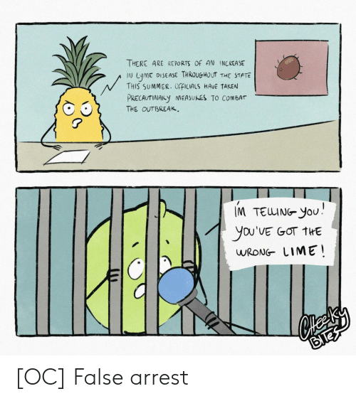 Taken, Summer, and The State: THERE ARE RE PORTS OF AN INCREASE  DISEASE THROUGHOUT THE STATE  LymE  THIS SUMMER. OfFICIALS HAVE TAKEN  N  PRECAUTINARY NEASUNES TO COMBAT  THE OUTBREAK  IM TEUING YoU  you'VE GOT THE  WRONG LIME [OC] False arrest