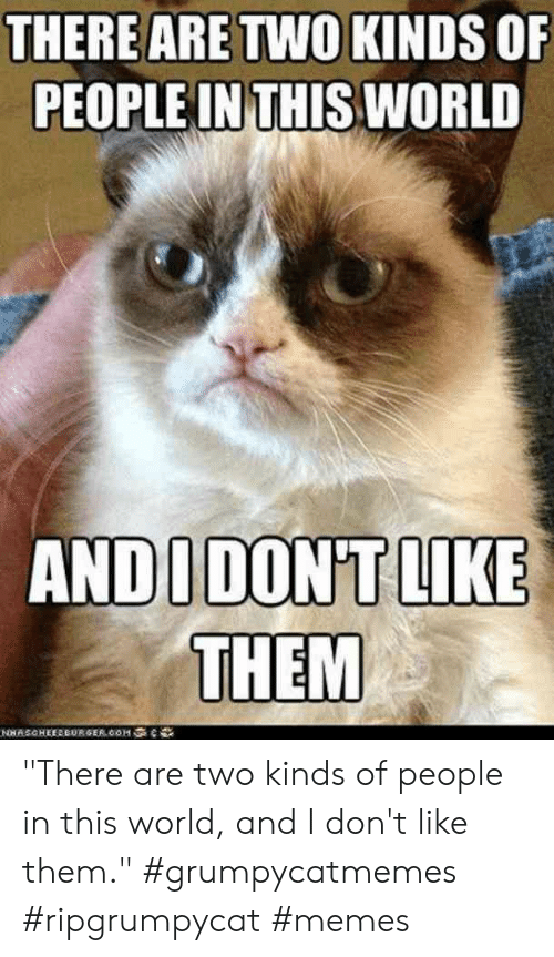 """Memes, World, and Them: THERE ARE TWO KINDS OF  PEOPLE IN THIS WORLD  ANDUDON'T LIKE  THEM  NSCHEEREURGER.cOMe """"There are two kinds of people in this world, and I don't like them.""""  #grumpycatmemes #ripgrumpycat #memes"""