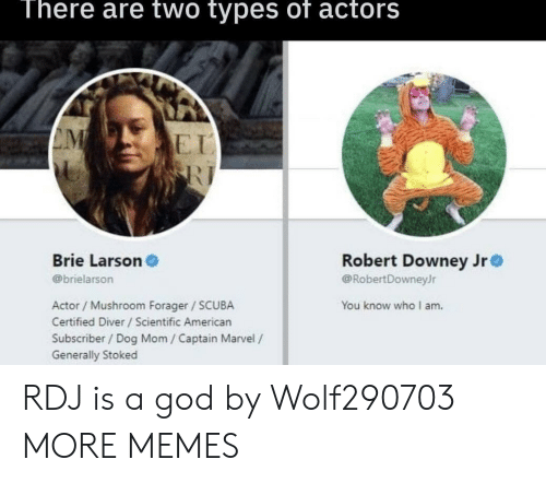Robert Downey Jr.: There are two types of actors  E I  Brie Larson  @brielarson  Robert Downey Jr  @RobertDowneyJr  Actor / Mushroom Forager SCUBA  Certified Diver /Scientific American  Subscriber/ Dog Mom / Captain Marvel /  Generally Stoked  You know who I am. RDJ is a god by Wolf290703 MORE MEMES