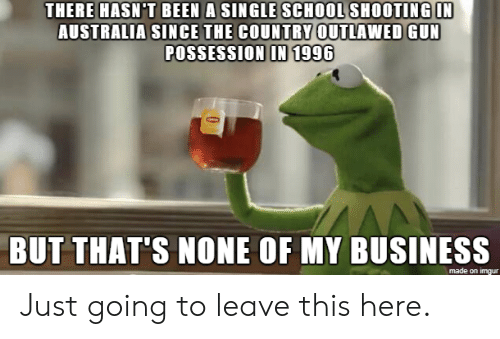 But Thats None Of My Business: THERE HASN'T BEEN A SINGLE SCHOOL SHOOTING IN  AUSTRALIA SINCE THE COUNTRY OUTLAWED GUN  POSSESSION IN 1996  BUT THAT'S NONE OF MY BUSINESS  made on imgur Just going to leave this here.