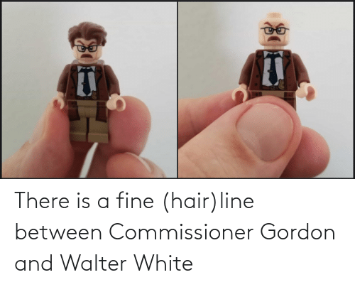 Gordon: There is a fine (hair)line between Commissioner Gordon and Walter White