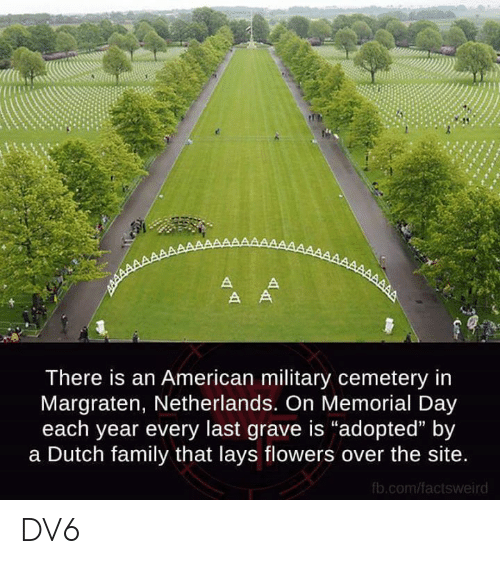 "Family, Lay's, and Memes: There is an American military cemetery in  Margraten, Netherlands. On Memorial Day  each year every last grave is ""adopted"" by  a Dutch family that lays flowers over the site  fb.com/factsweird DV6"
