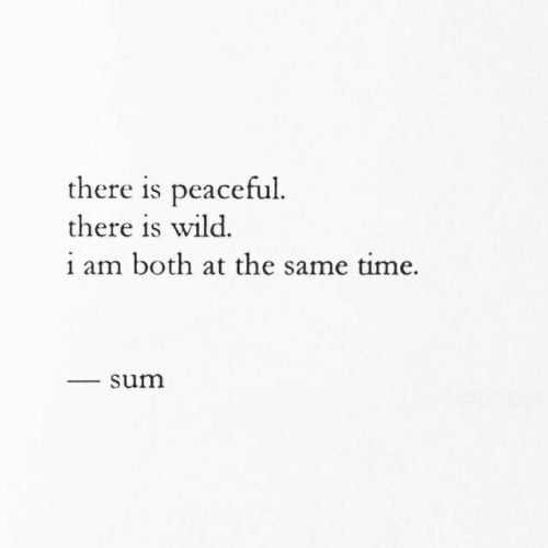 sum: there is peaceful  there is wild.  i am both at the same time.  sum