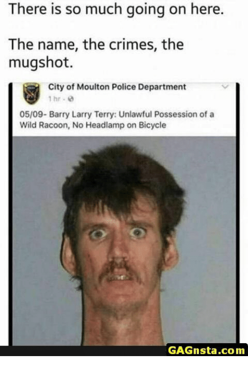 mugshot: There is so much going on here.  The name, the crimes, the  mugshot.  City of Moulton Police Department  1hr. 8  05/09- Barry Larry Terry: Unlawful Possession of a  Wild Racoon, No Headlamp on Bicycle  GAGnsta.com