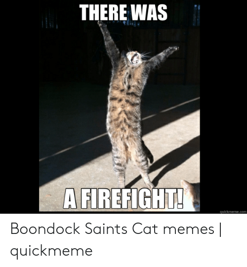 There Was A Firefight: THERE WAS  A FIREFIGHT!  quickmeme.com Boondock Saints Cat memes | quickmeme