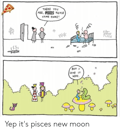 Love, Memes, and Moon: THERE YOU  ARE, PISCES PLEASE  BUT I  LOVE IT  HERE  0 Yep it's pisces new moon