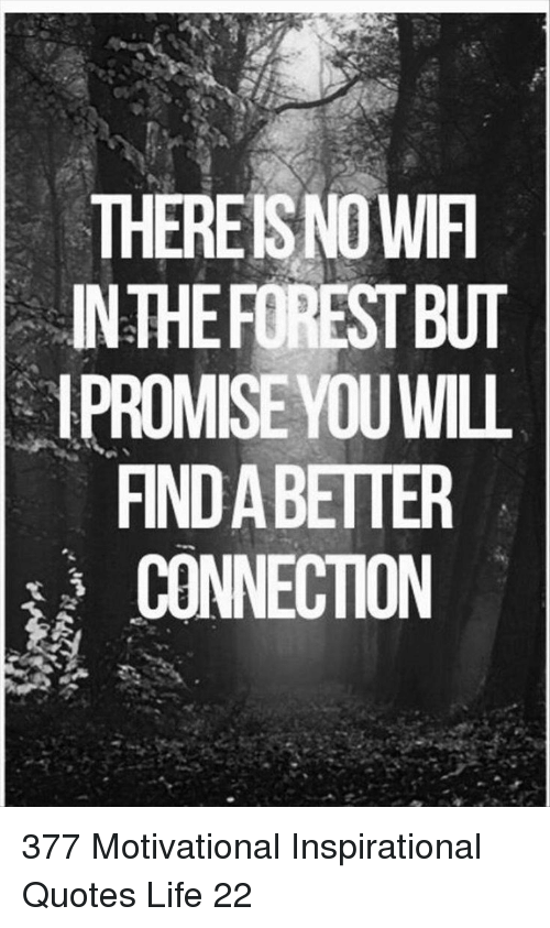 inspirational quotes: THEREISNO WIF  INTHEFOREST BUT  1PROMISE YOUWILL  FIND A BETTER  CONNECTION 377 Motivational Inspirational Quotes Life 22