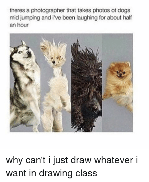 Whatevs: theres a photographer that takes photos ot dogs  mid jumping and i've been laughing for about half  an hour why can't i just draw whatever i want in drawing class