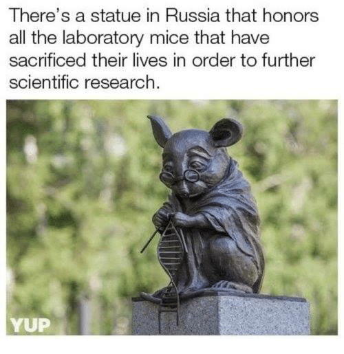 Russia, All The, and All: There's a statue in Russia that honors  all the laboratory mice that have  sacrificed their lives in order to further  scientific research  YUP