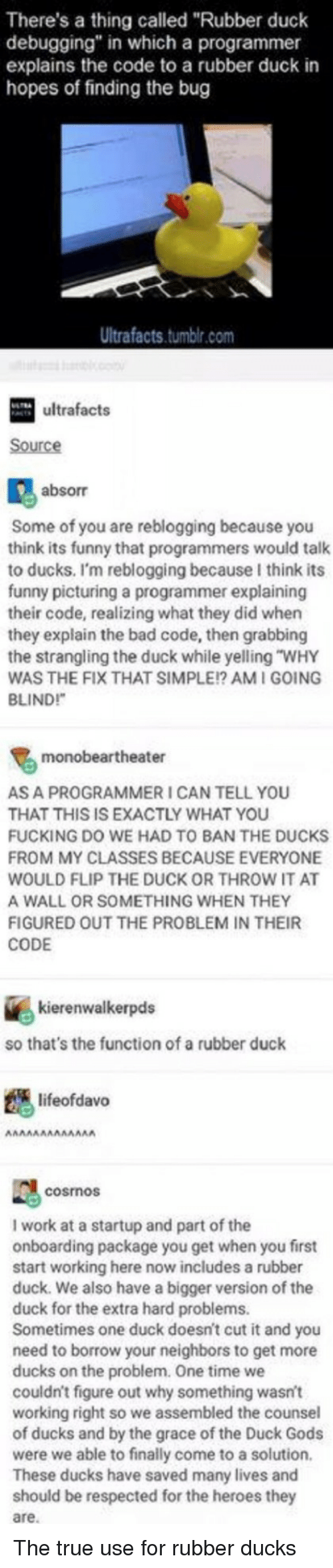 "Bad, Fucking, and Funny: There's a thing called ""Rubber duck  debugging"" in which a programmer  explains the code to a rubber duck in  hopes of finding the bug  Ultrafacts.tumbir.com  ultrafacts  Source  absorr  Some of you are reblogging because you  think its funny that programmers would talk  to ducks. I'm reblogging because I think its  funny picturing a programmer explaining  their code, realizing what they did when  they explain the bad code, then grabbing  the strangling the duck while yelling ""WHY  WAS THE FIX THAT SIMPLE!? AMI GOING  BLINDI  monobeartheater  S A PROGRAMMER I CAN TELL YOU  HAT THIS IS EXACTLY WHAT YOU  FUCKING DO WE HAD TO BAN THE DUCKS  FROM MY CLASSES BECAUSE EVERYONE  WOULD FLIP THE DUCK OR THROW IT AT  A WALL OR SOMETHING WHEN THEY  IGURED OUT THE PROBLEM IN THEIR  CODE  kierenwalkerpds  so that's the function of a rubber duck  lifeofdavo  cosmos  I work at a startup and part of the  onboarding package you get when you first  start working here now includes a rubber  duck. We also have a bigger version of the  duck for the extra hard problems.  metimes one duck doesn't cut it and you  need to borrow your neighbors to get more  ducks on the problem. One time we  couldn't figure out why something wasnt  working right so we assembled the counsel  of ducks and by the grace of the Duck Gods  were we able to finally come to a solution  These ducks have saved many lives and  uld be respected for the heroes they  are. The true use for rubber ducks"
