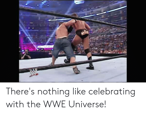 World Wrestling Entertainment, Universe, and Wwe Universe: There's nothing like celebrating with the WWE Universe!