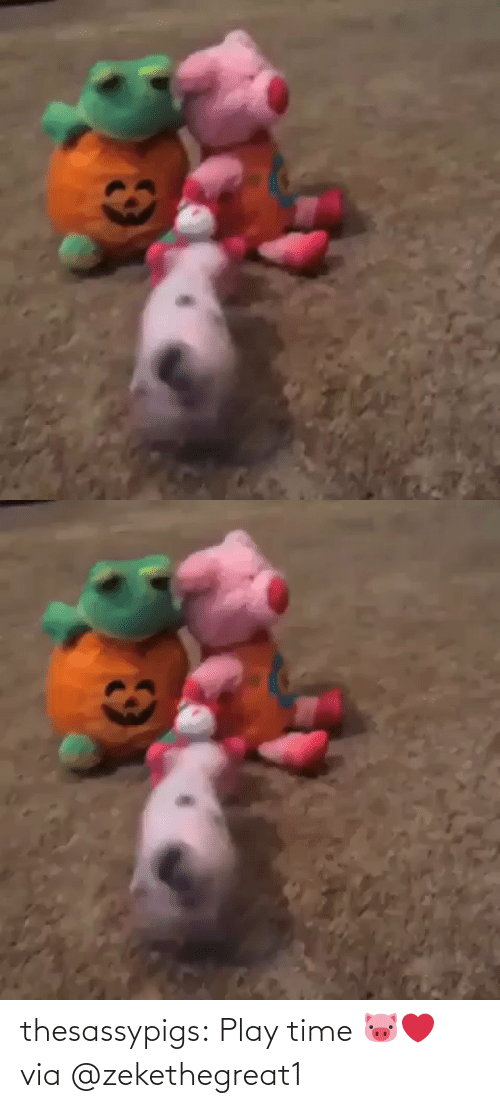 play: thesassypigs: Play time 🐷❤️ via @zekethegreat1