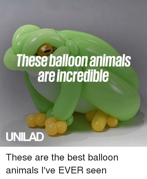 Animals, Dank, and Best: These balloon animals  are incredible  UNILAD These are the best balloon animals I've EVER seen