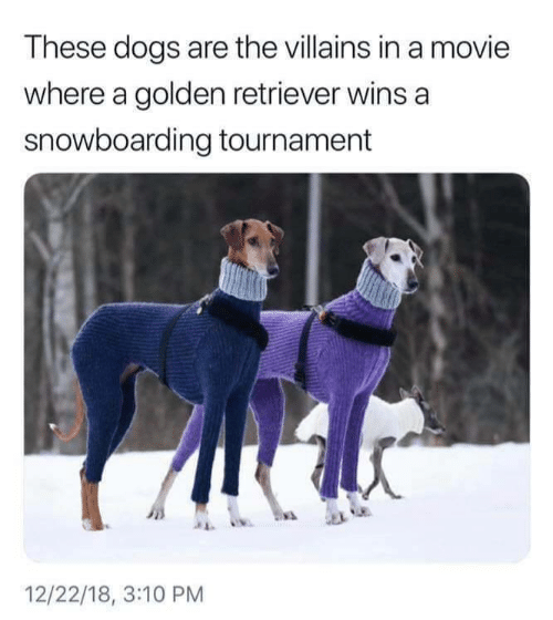retriever: These dogs are the villains in a movie  where a golden retriever wins a  snowboarding tournament  12/22/18, 3:10 PM