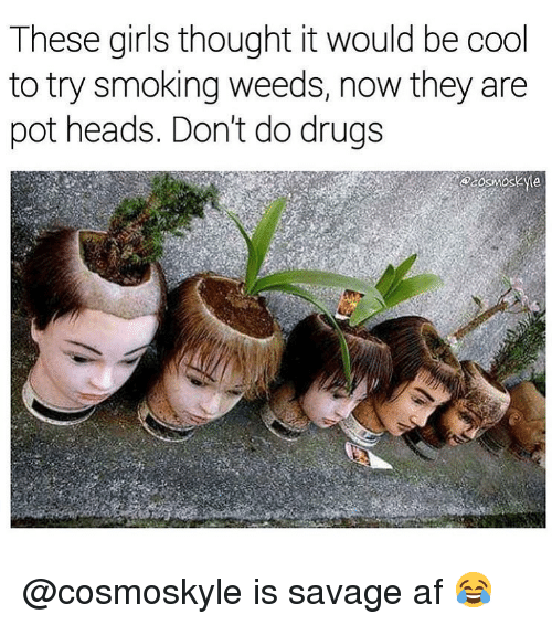 weeds: These girls thought it would be cool  to try smoking weeds, now they are  pot heads. Don't do drugs @cosmoskyle is savage af 😂