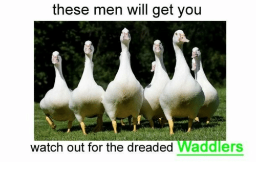The Dreaded: these men will get you  watch out for the dreaded Waddlers