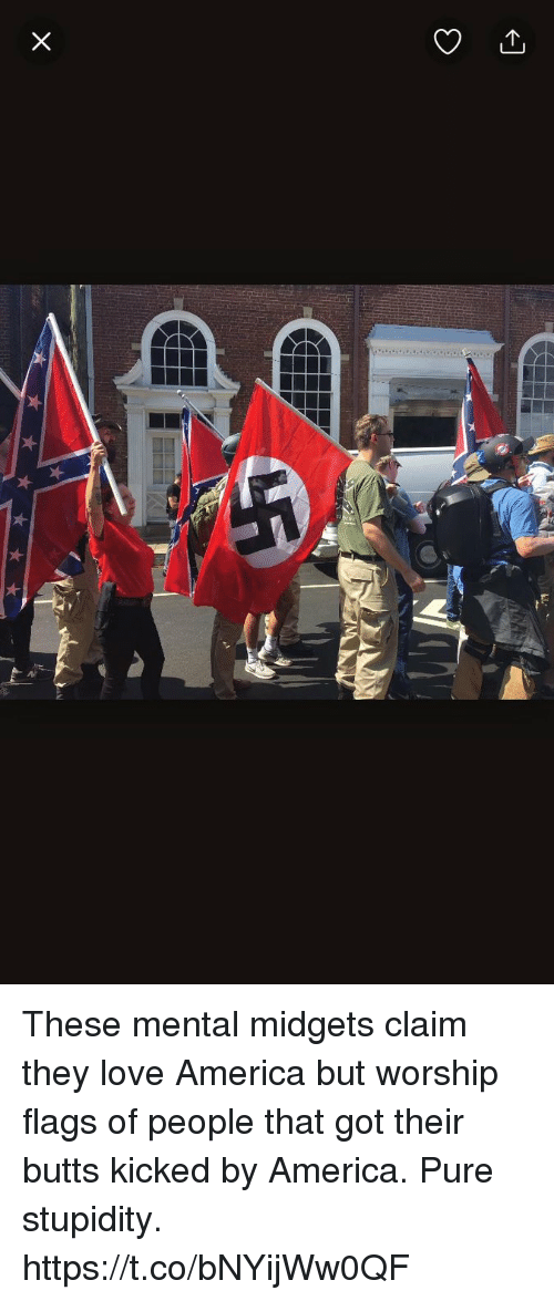 Pured: These mental midgets claim they love America but worship flags of people that got their butts kicked by America. Pure stupidity. https://t.co/bNYijWw0QF