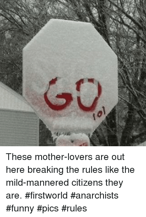Funny, Mild, and Mother: These mother-lovers are out here breaking the rules like the mild-mannered citizens they are. #firstworld #anarchists #funny #pics #rules