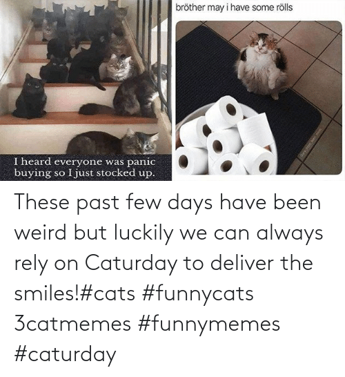 funnymemes: These past few days have been weird but luckily we can always rely on Caturday to deliver the smiles!#cats #funnycats 3catmemes #funnymemes #caturday