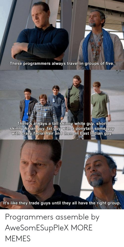 Asian, Crazy, and Dank: These programmers always travel in groups of five.  There's always a tall skinny white guy, short  skinny Asian guy, fat guy with a ponytail, some guy  with crazy facial hair and then an East Indian guy.  It's like they trade guys until they all have the right group. Programmers assemble by AweSomESupPleX MORE MEMES