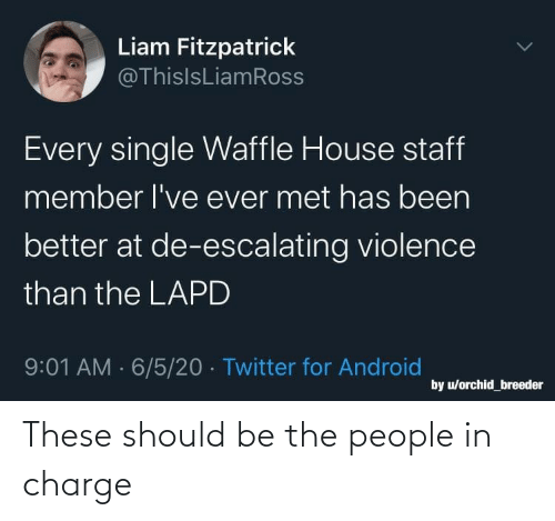 people: These should be the people in charge