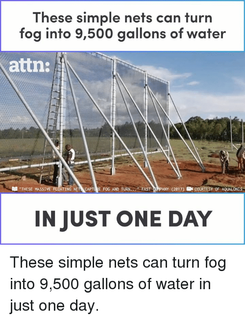 """attn: These simple nets can turn  fog into 9,500 gallons of water  attn:  """"THESE MASSI  TING NET CAPTURE FOG AND TURN FAST CRMPANY (2017) ECOURTESY OF AQUALONIS  IN JUST ONE DAY These simple nets can turn fog into 9,500 gallons of water in just one day."""