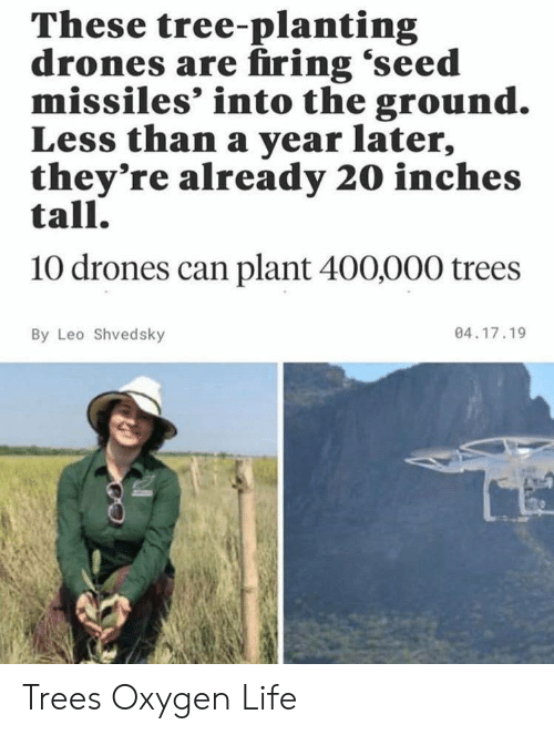 leo: These tree-planting  drones are firing 'seed  missiles' into the ground.  Less than a year later,  they're already 20 inches  tall.  10 drones can plant 400,000 trees  04.17.19  By Leo Shvedsky Trees Oxygen Life