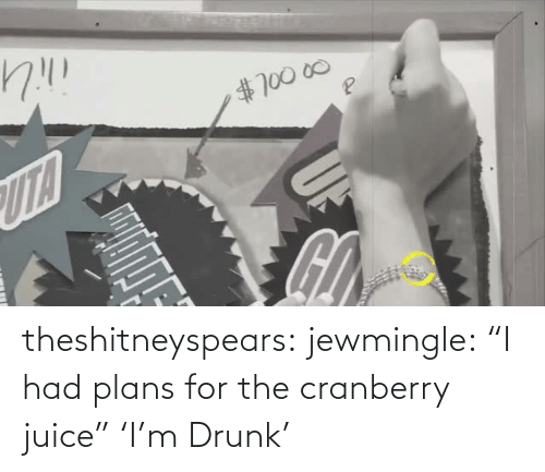 "cranberry: theshitneyspears:  jewmingle:  ""I had plans for the cranberry juice""  'I'm Drunk'"