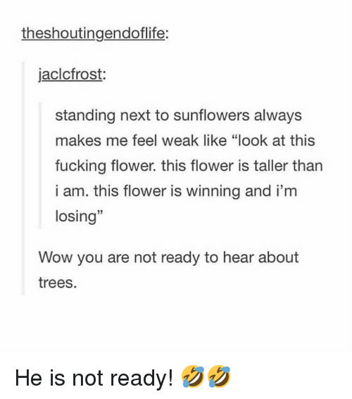 """Fucking, Memes, and Wow: theshoutingendoflife:  jaclcfrost:  standing next to sunflowers always  makes me feel weak like """"look at this  fucking flower. this flower is taller tharn  i am. this flower is winning and i'm  losing""""  13  Wow you are not ready to hear about  trees. He is not ready! 🤣🤣"""