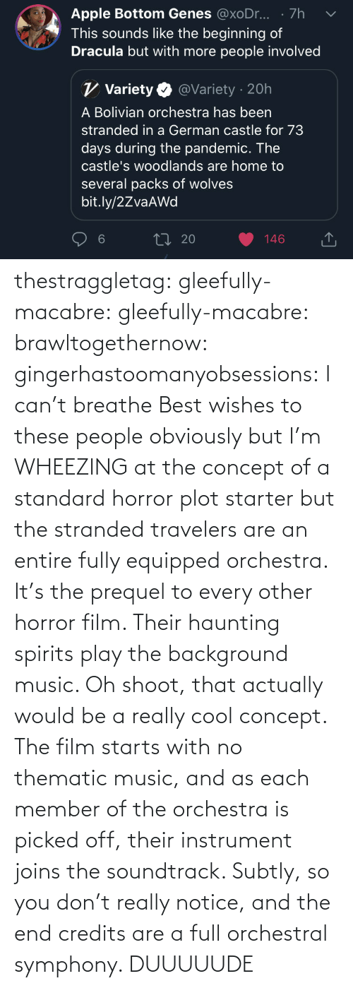 At: thestraggletag:  gleefully-macabre:  gleefully-macabre:   brawltogethernow:  gingerhastoomanyobsessions: I can't breathe Best wishes to these people obviously but I'm WHEEZING at the concept of a standard horror plot starter but the stranded travelers are an entire fully equipped orchestra.    It's the prequel to every other horror film. Their haunting spirits play the background music.     Oh shoot, that actually would be a really cool concept. The film starts with no thematic music, and as each member of the orchestra is picked off, their instrument joins the soundtrack. Subtly, so you don't really notice, and the end credits are a full orchestral symphony.   DUUUUUDE