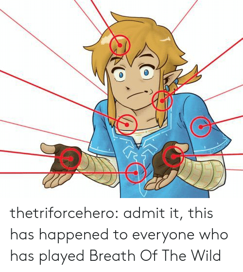 Tumblr, Blog, and Wild: thetriforcehero:  admit it, this has happened to everyone who has played Breath Of The Wild