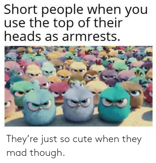 though: They're just so cute when they mad though.
