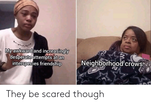 scared: They be scared though