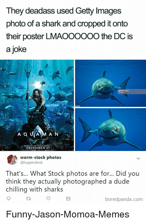 Jason Momoa: They deadass used Getty Images  photo of a shark and cropped it onto  their poster LMAOOOOOO the DC is  a joke  N LY IN THEATERS  DECEMBER 21  worm-stock photos  @hupperdook  That's... What Stock photos are for... Did you  think they actually photographed a dude  chilling with sharks  boredpanda.com Funny-Jason-Momoa-Memes