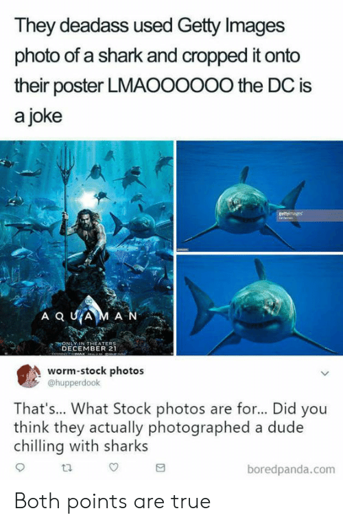 Getty Images: They deadass used Getty Images  photo of a shark and cropped it onto  their poster LMAOOOoOo the DC is  a joke  ONLY-IN THEATERS  DECEMBER 21  worm-stock photos  @hupperdook  That's... What Stock photos are for... Did you  think they actually photographed a dude  chlling with sharks  ta  boredpanda.com Both points are true