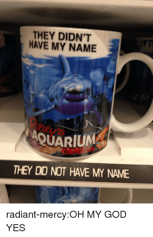 God, Oh My God, and Target: THEY DIDN'T  HAVE MY NAME  ney  AQUARIUM  CANAD  THEY DID NOT HAVE MY NAME radiant-mercy:OH MY GOD YES