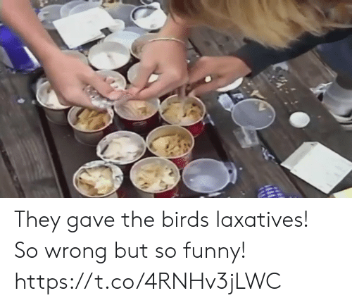 So Wrong: They gave the birds laxatives! So wrong but so funny!  https://t.co/4RNHv3jLWC