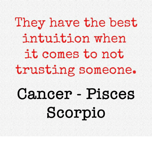 Best, Cancer, and Pisces: They have the best  intuition when  it comes to not  trusting someone.  Cancer Pisces  Scorpio